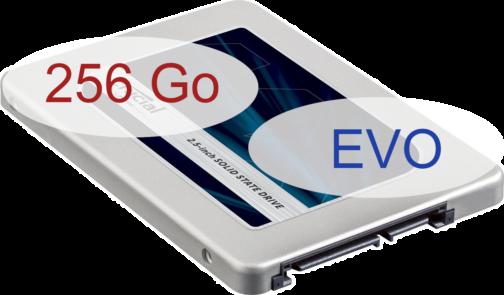 SSD_SATA_256_EVO.png